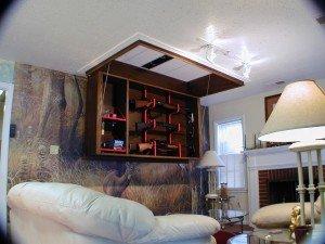 Beau Fold Down Ceiling Storage